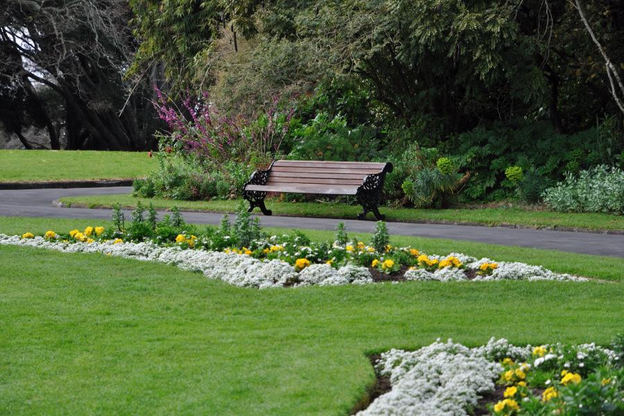 Cool il domain park di auckland con ampie aree verdi e - Giardini curati ...